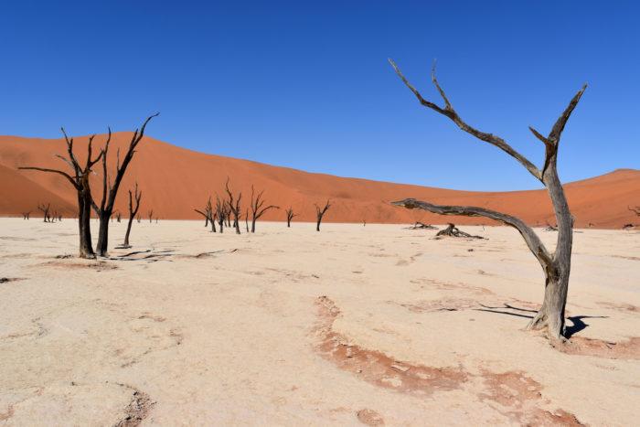 Voyage en groupe dans le désert du Sossusvlei en Namibie