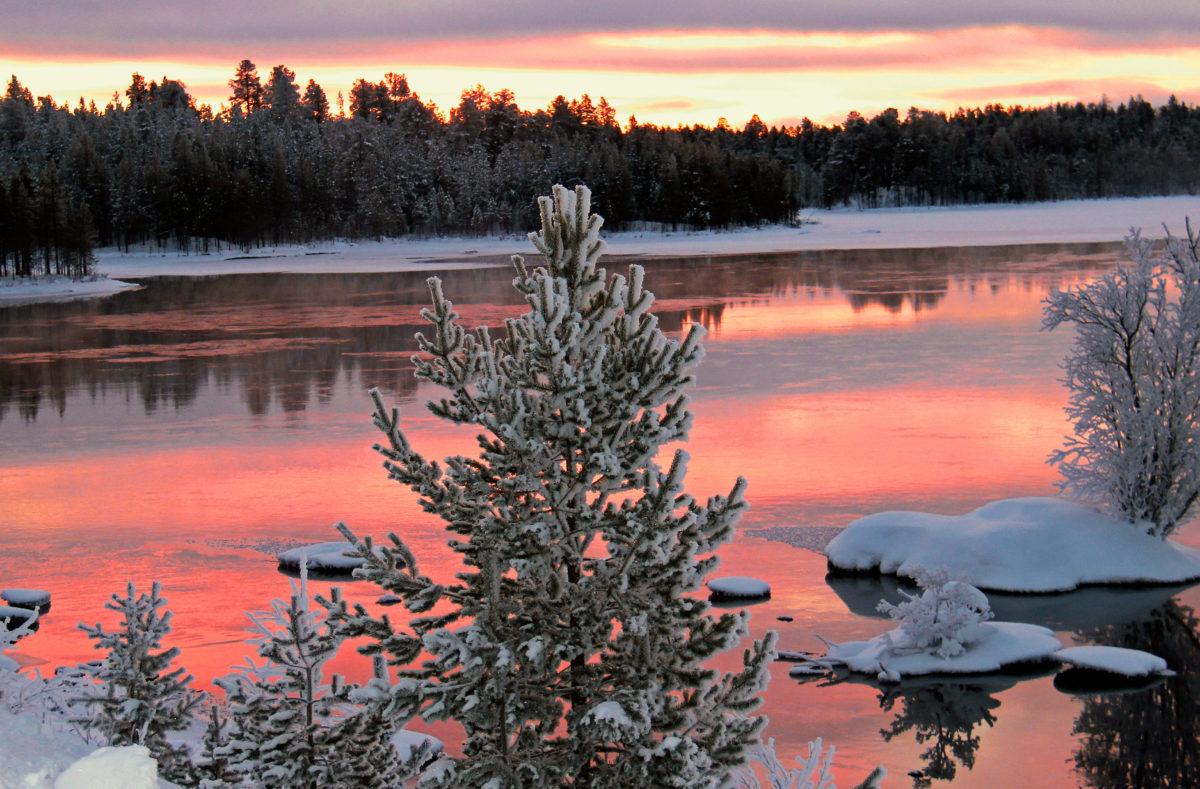 Paysage enneigé de la Laponie finlandaise