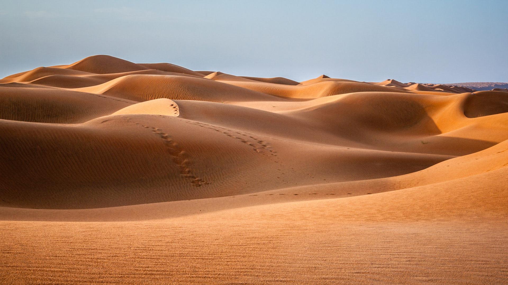 Visiter le Wahiba Sands Oman
