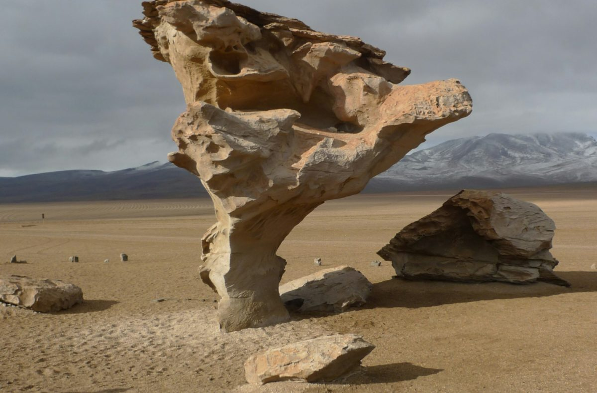 arbol de Piedra Siloli Potosi Bolivie