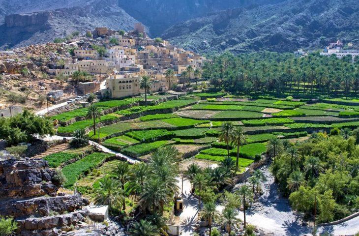 Circuit organisé Oman et les villages des montagnes