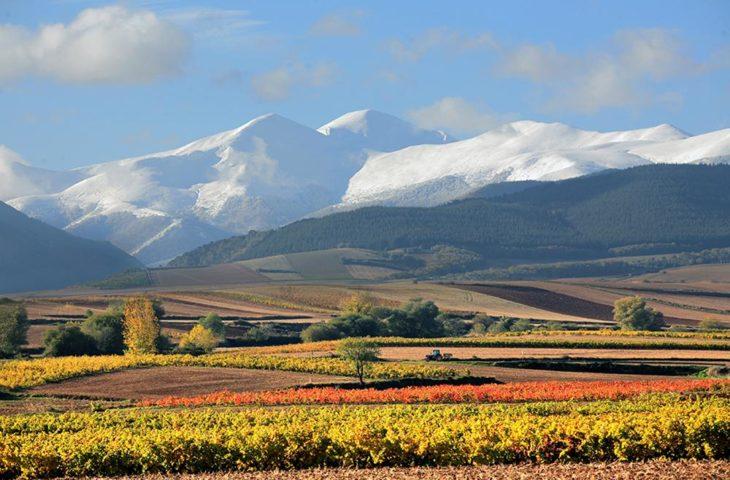 Visiter Rioja dans le nord de l'Espagne