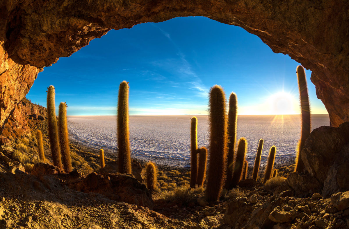 Visiter l'île de Incahuasi au Salar d'Uyuni Bolivie