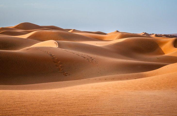 Passer une nuit au Wahiba Sands lors d'un circuit organisé à Oman