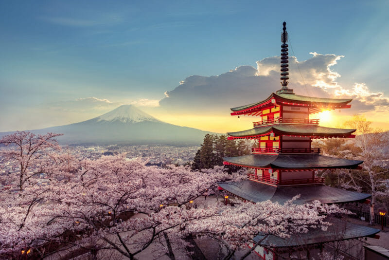 Sakura au printemps au Japon_AdobeStock