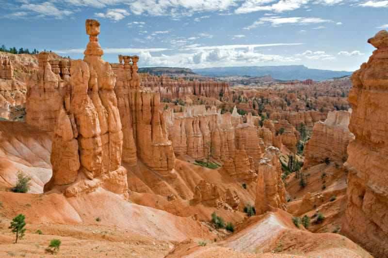 Bryce Canyon en voyage organisé dans l'ouest américain