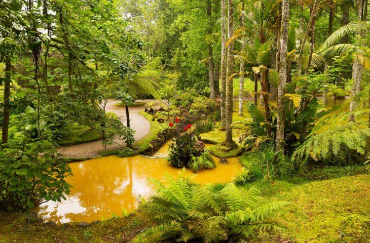Voyage en groupe aux Açores et visiter le parc de Terra Nostra
