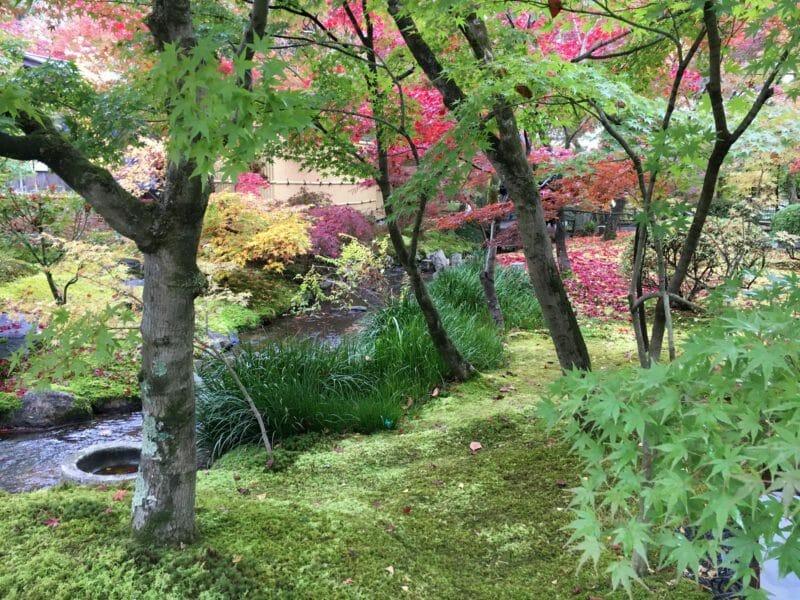Kyoto en voyage en groupe au Japon en automne