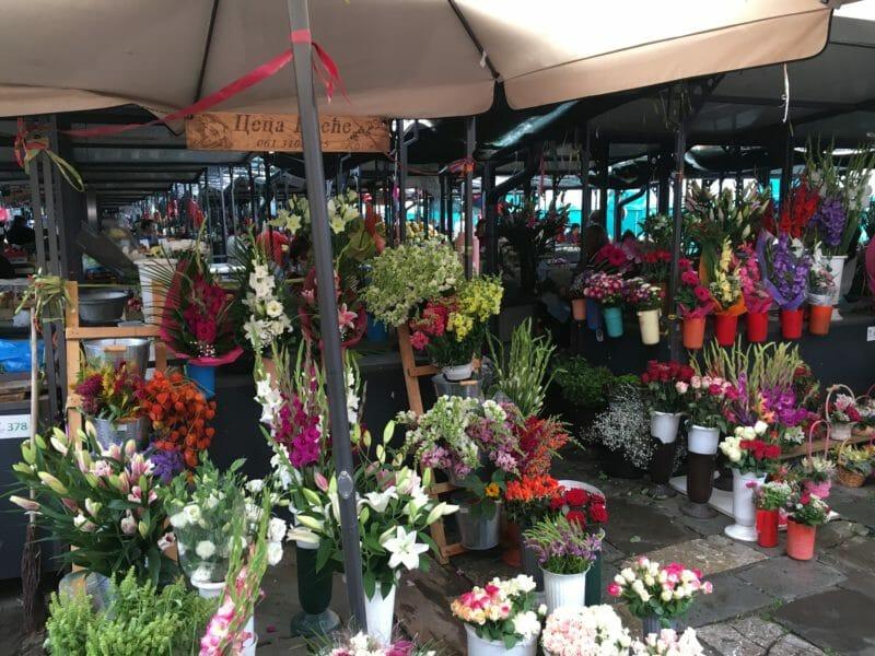 Marché aux fleurs en voyage organisé en Serbie-Monténégro