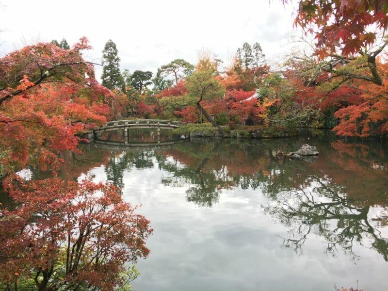 Voyage en groupe organisé au Japon en automne