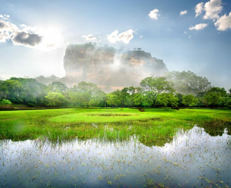 Voyage en groupe au Sri Lanka et visite de Sigiriya