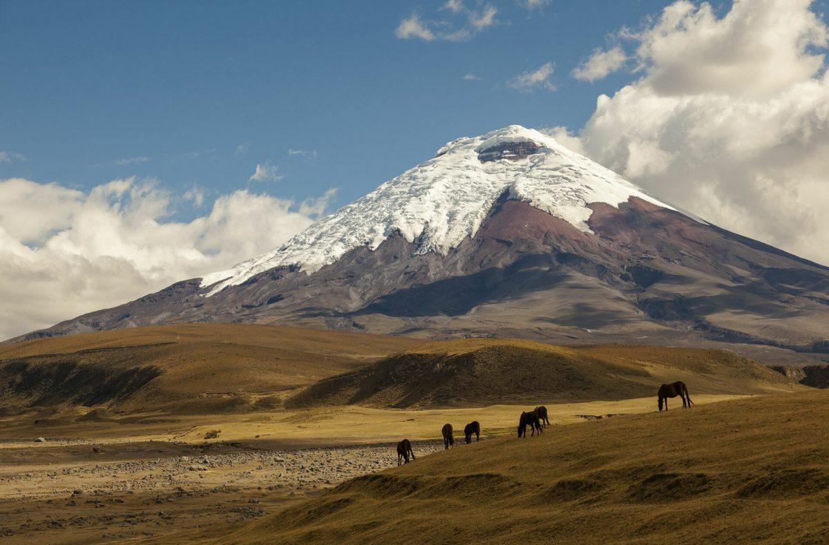 Voir le Volcann de Cotopaxi en voyage en groupe en Equateur