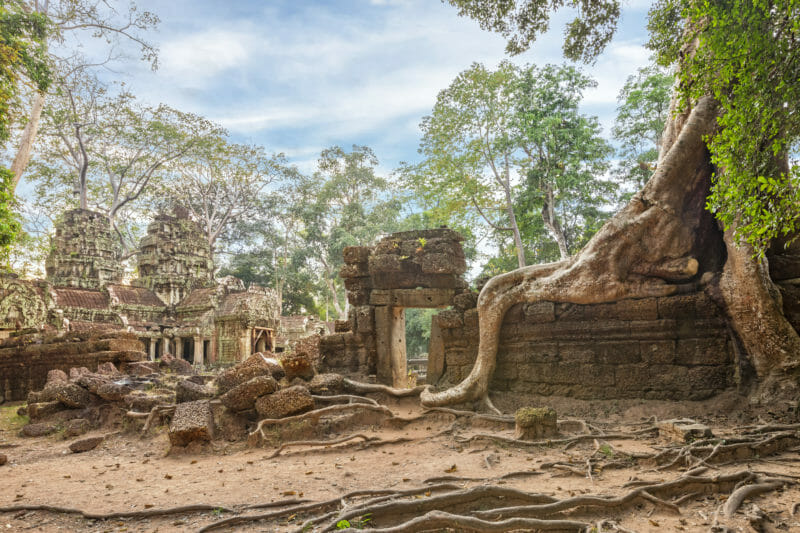 Visite en groupe de Ta Prohm Cambodge