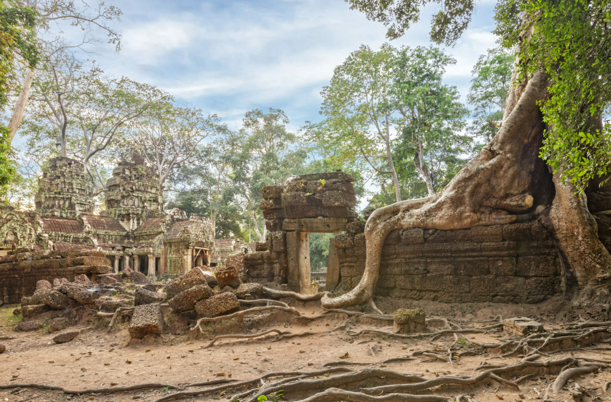 Visite en groupe de Ta Prohm Cambodge