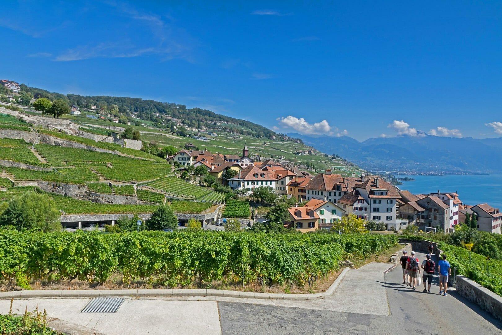 Randonnée en Suisse dans les Terrasses du Lavaux