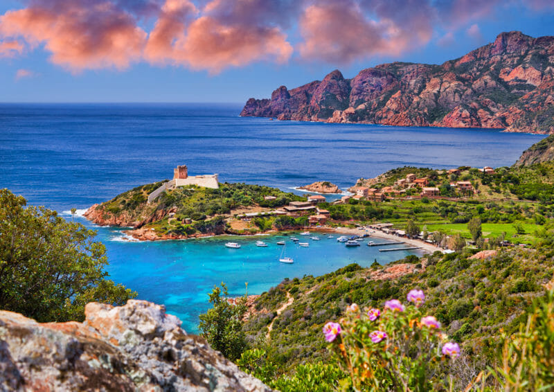 Visiter en groupe la réserve de Scandola en Corse