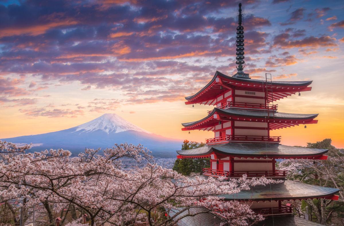 Mont Fuji, du Sakura et du Chureito dans la préfecture de Yamanashi, au Japon