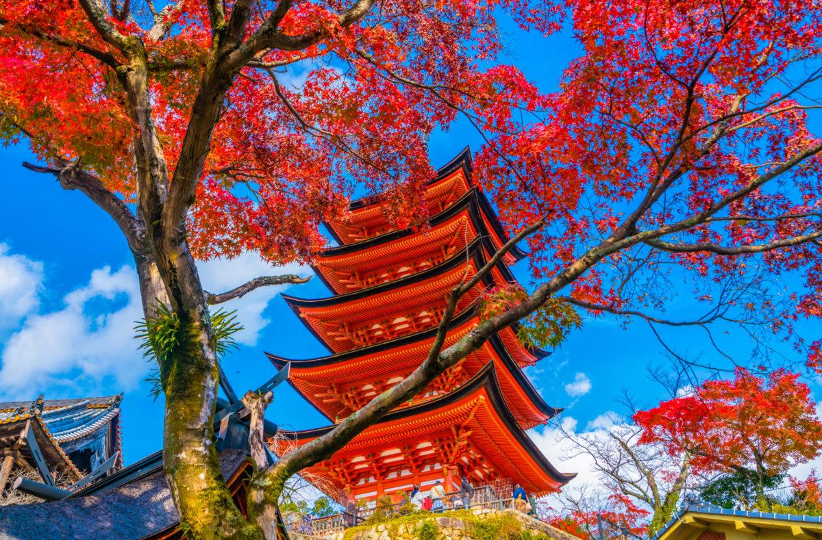 Pagode de cinq étages du sanctuaire de Toyokuni à Miyajima, Hiroshima, Japon