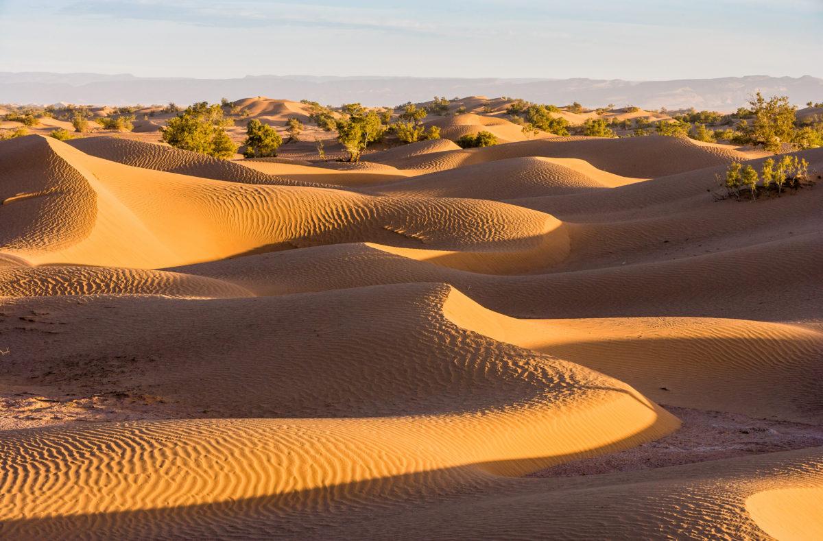 Lever de soleil sur les dunes du Sahara à Mhamid au Maroc