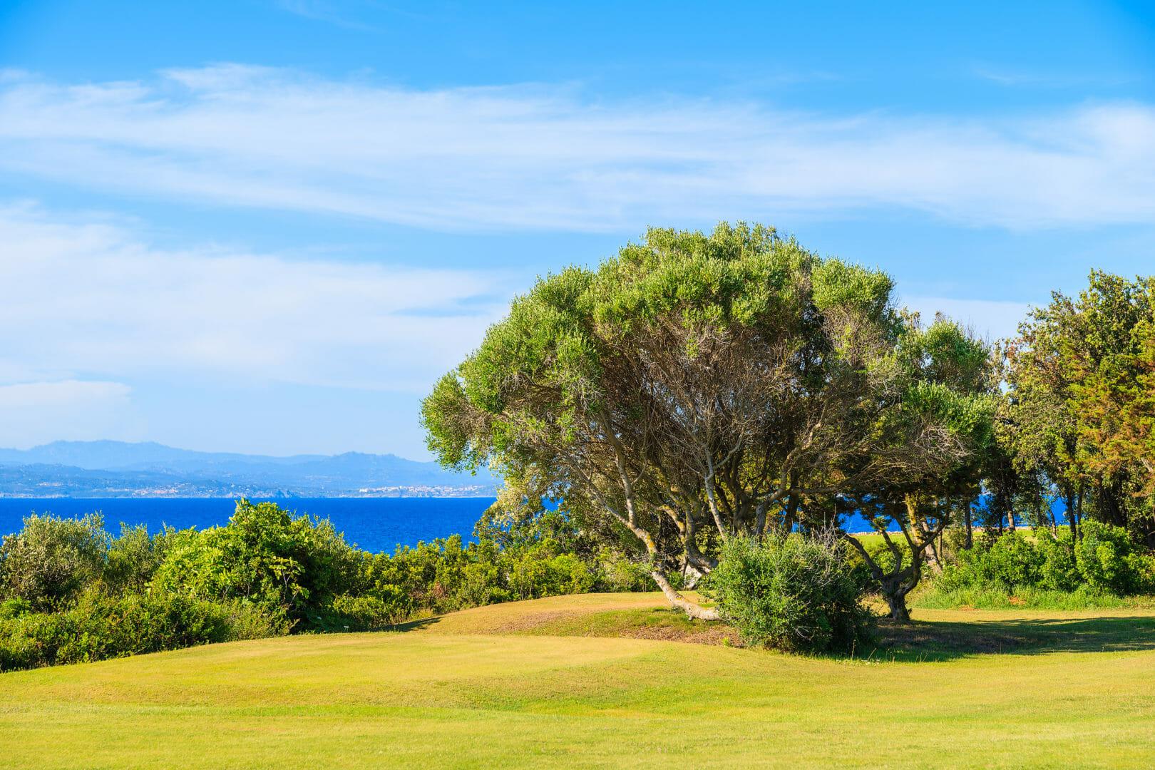 Voyage golfique Golf de Spérone Corse du Sud