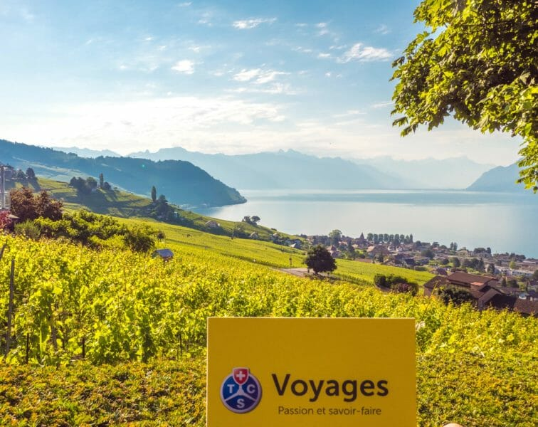 Terrasses de Lavaux site UNESCO en Suisse
