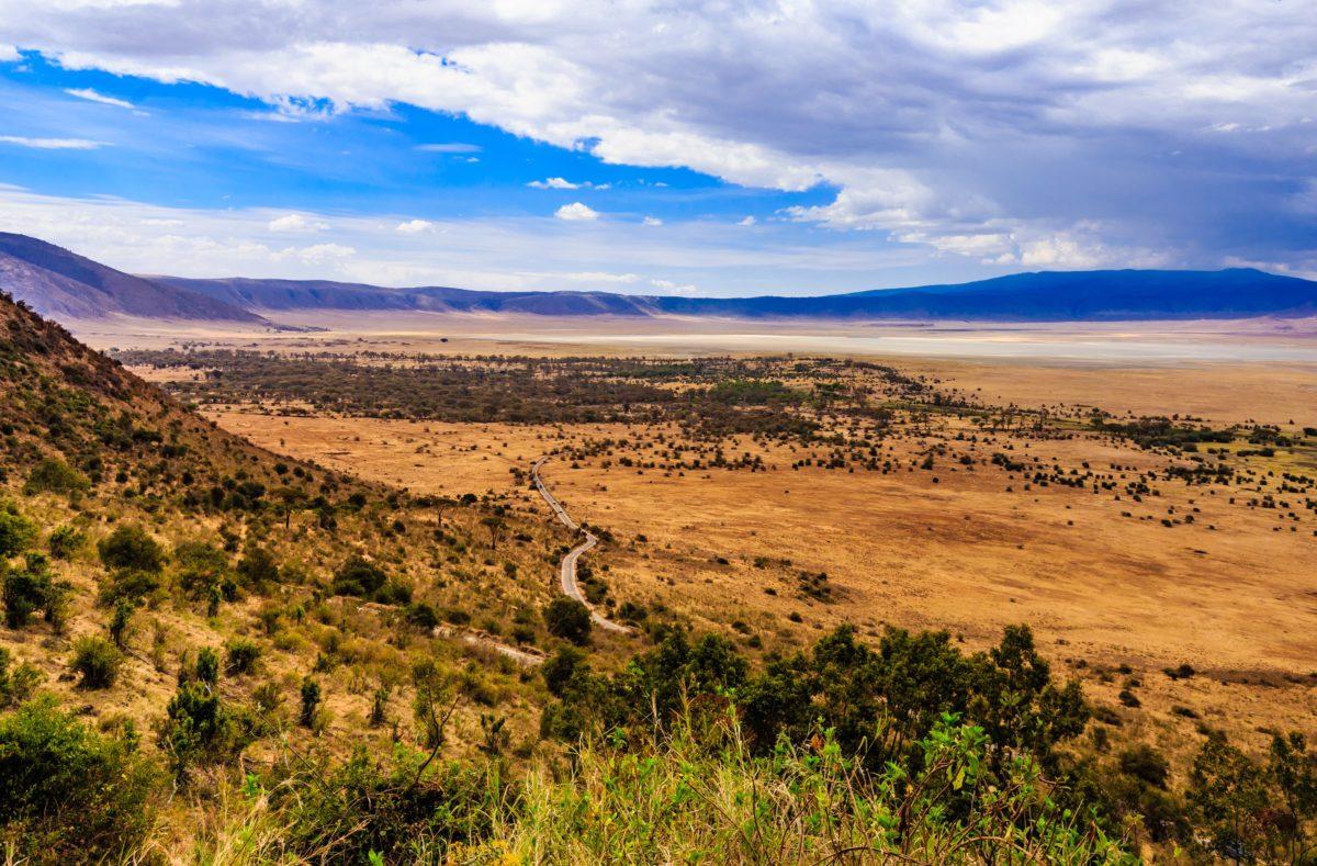 Découvrir le cratère ngorongoro en Tanzanie
