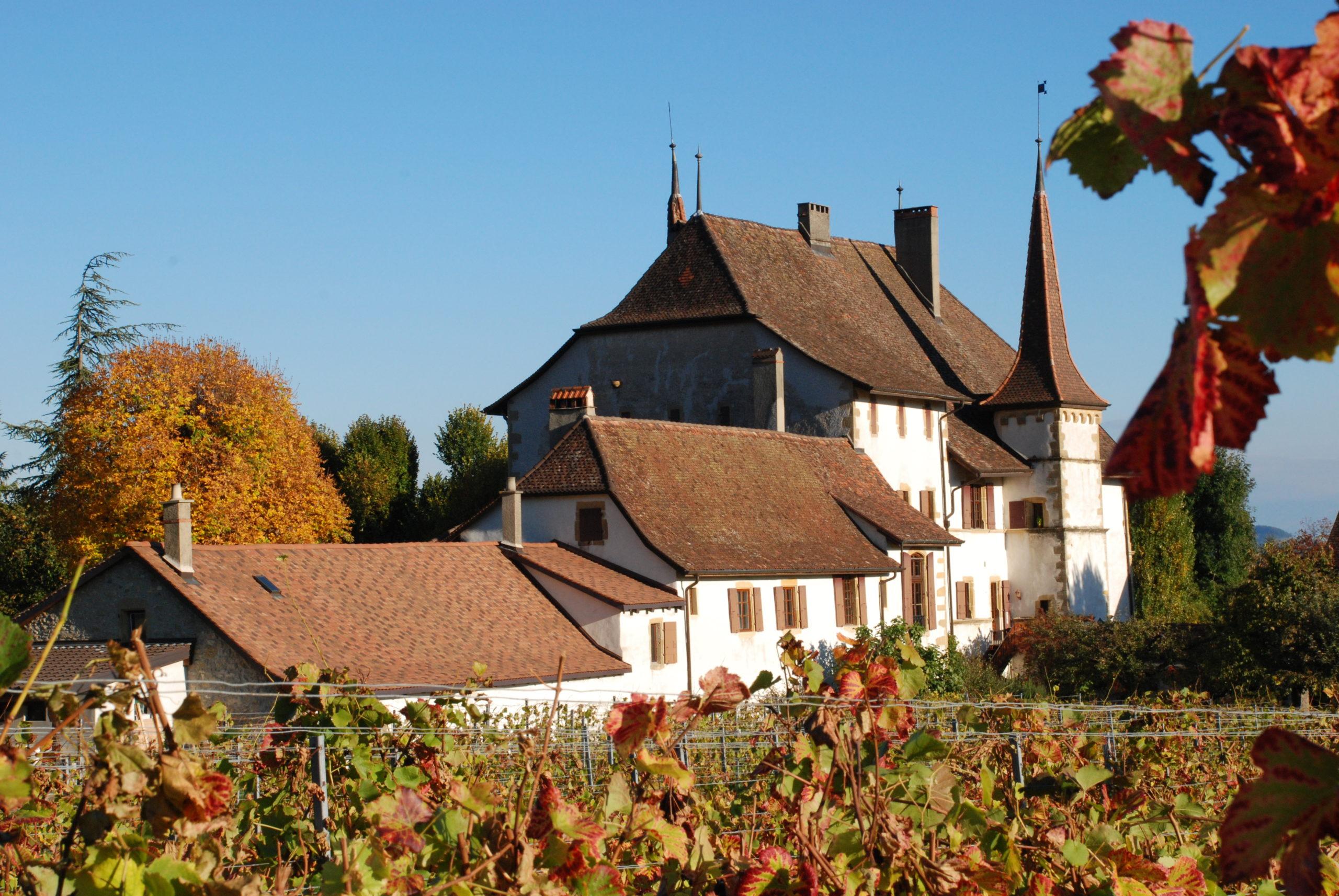 Visiter Auvernier et son château dans le Pays de Neuchâtel
